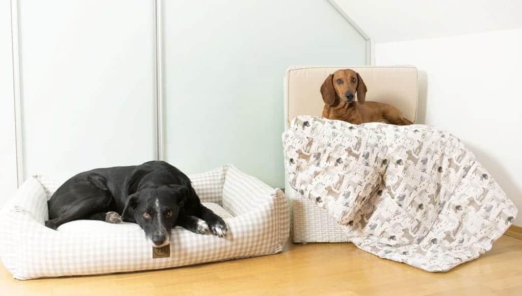 Hundebett Organic Karo beige-weiß