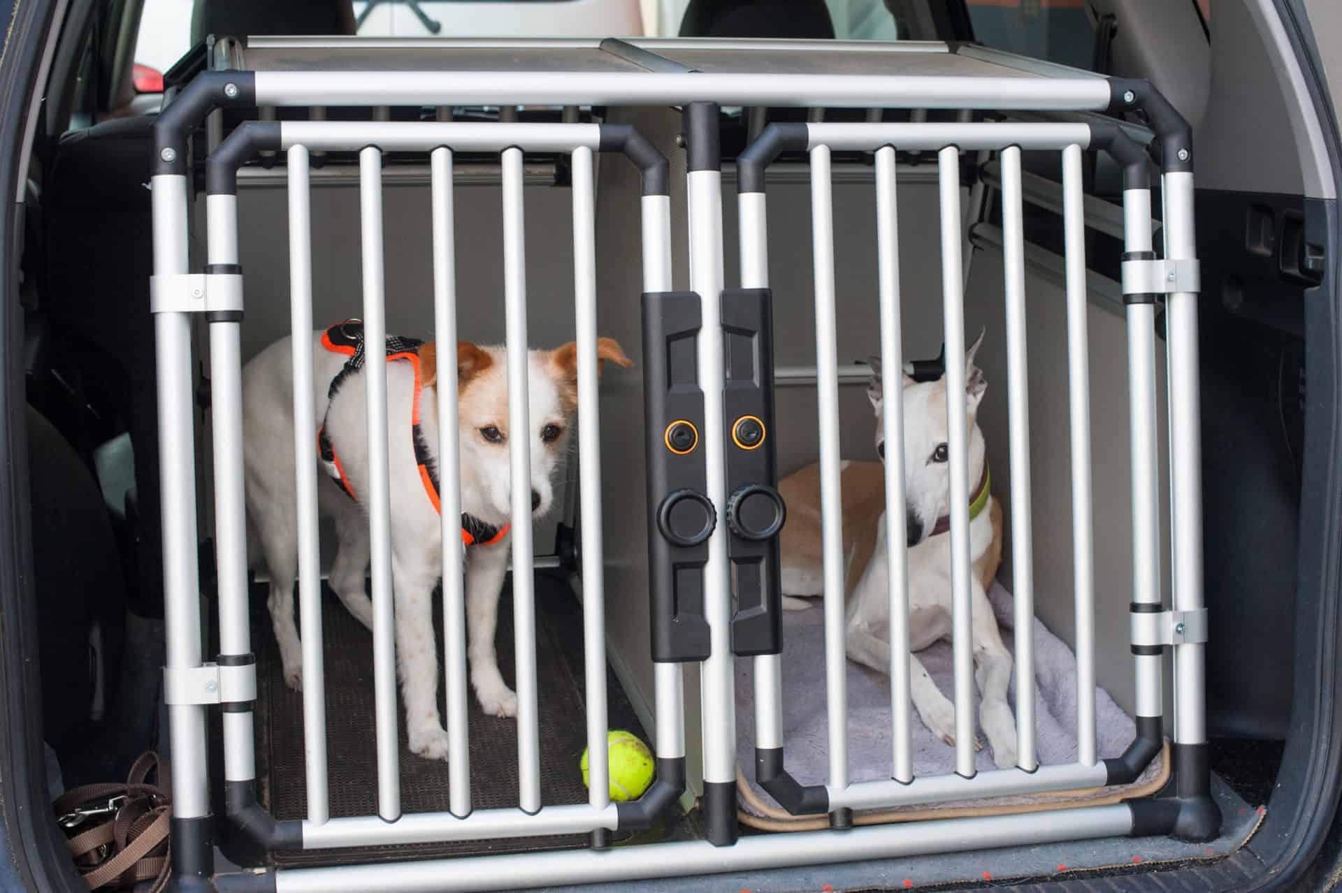 Hundebetten nach Maß für Transportboxen