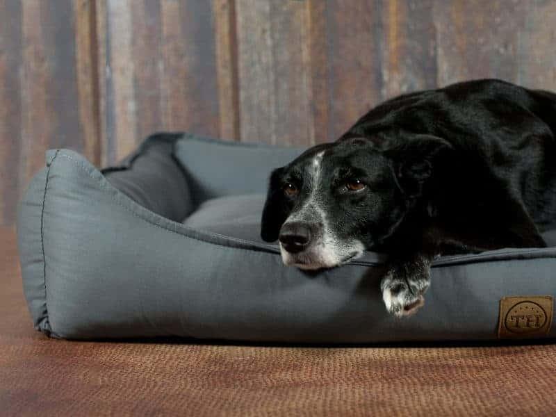 Orthopädisches Hundebett Organic 95 Graphit