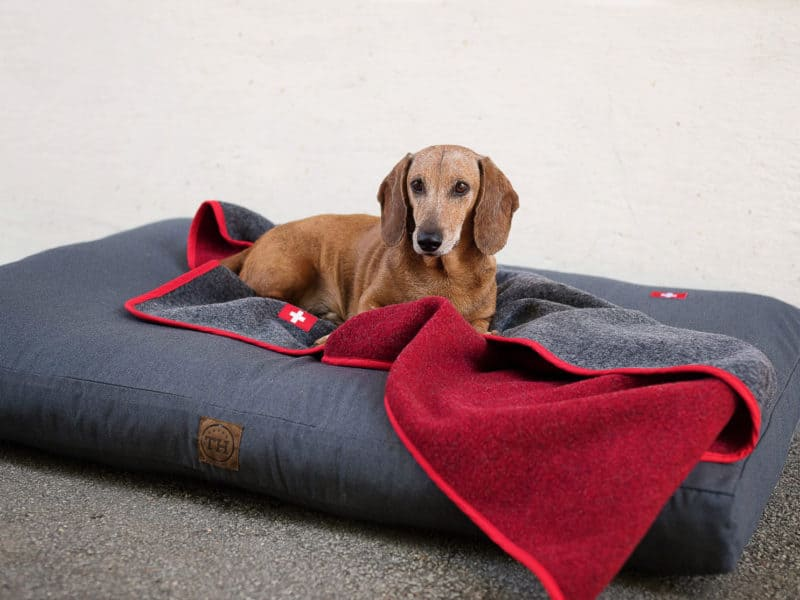 Orthopädisches Hundekissen Wallis mit Almdeckerl Grau-Rot