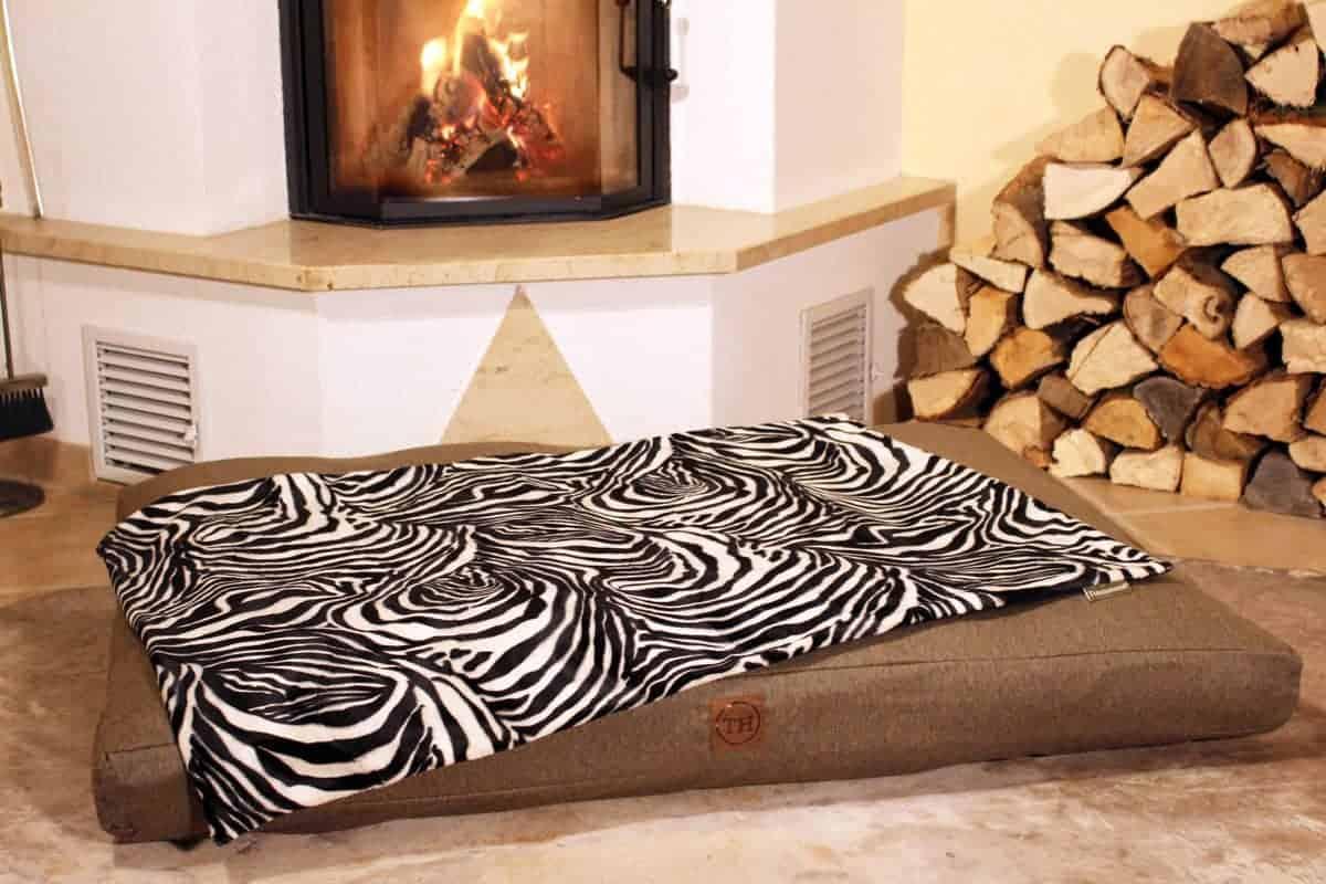 Hundedecke Go Wild Zebra mit Softshell