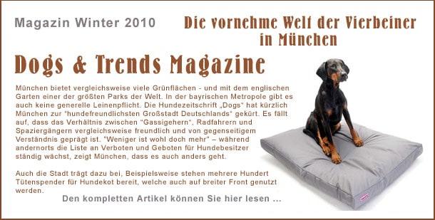 dogs_trend_magazine