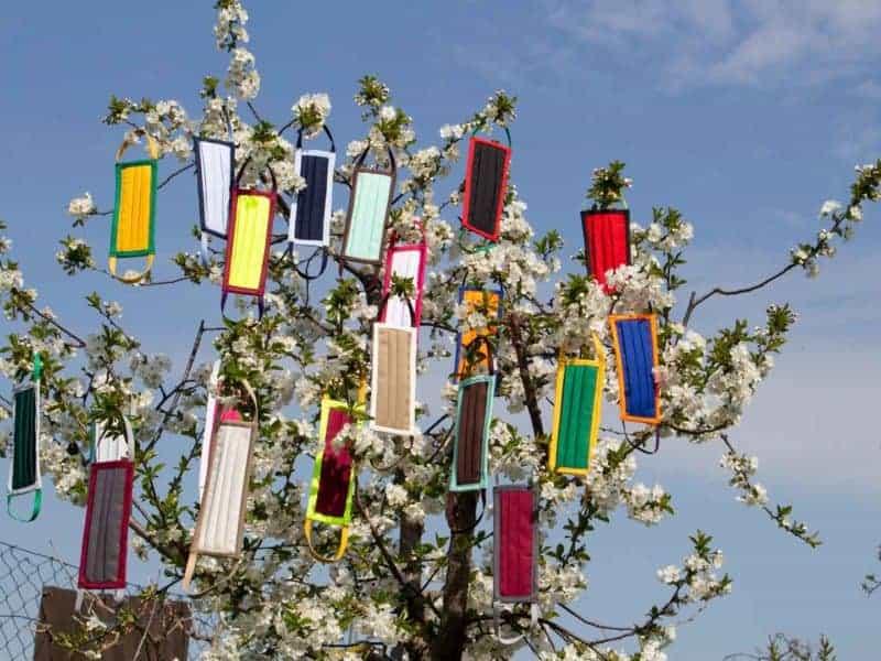 Mund- und Nasenmaske Organic 95 Zweifarbig Farbübersicht am Baum hängend