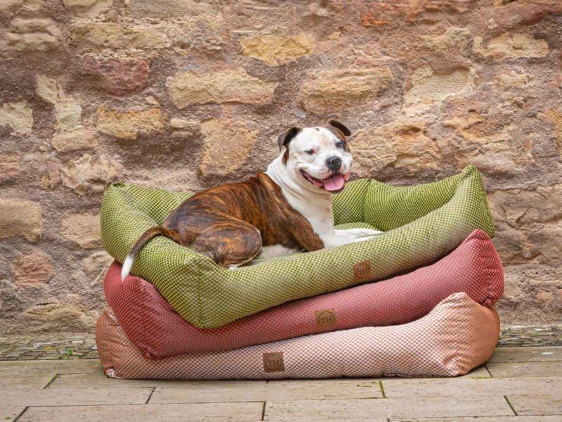 Hundebett CARA Farbübersicht mit Bulldogge