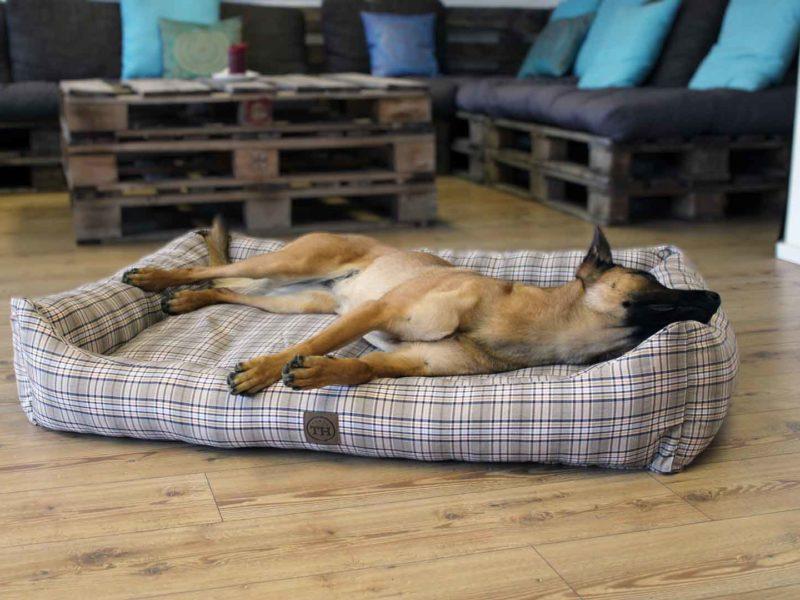 Orthopädisches Hundebett Cottage von Traumhund®️