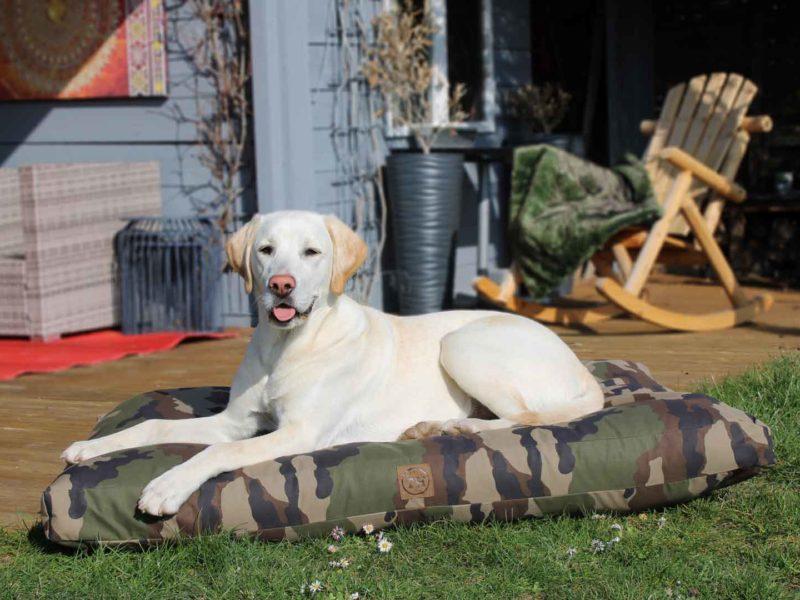 Bezug Adventure für orthopädische Hundekissen von Traumhund®️