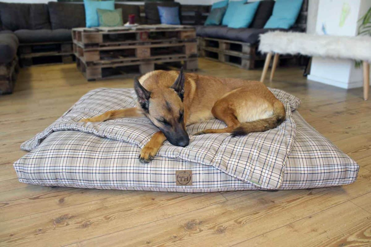 Hundekissen und Hundedecke Adventure Cottage Malinois
