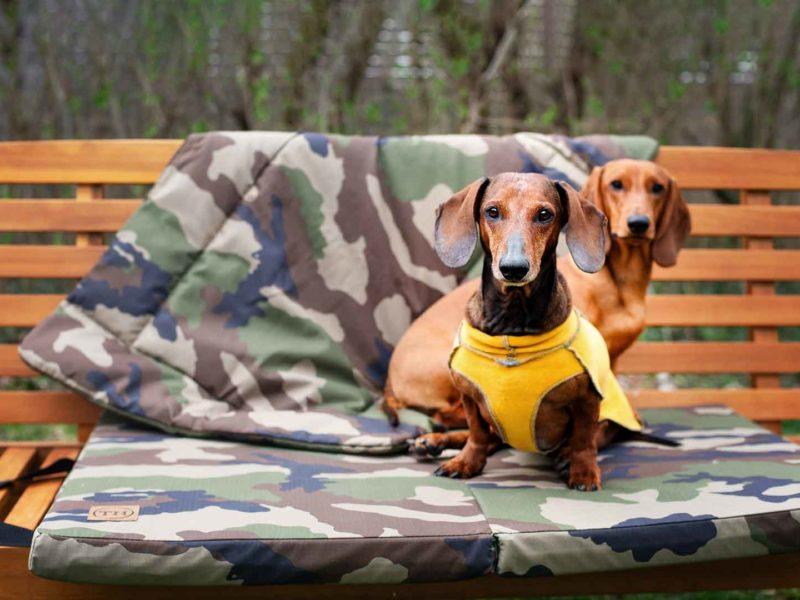 Hundematte und Hundedecke Adventure Cottage mit Dackel