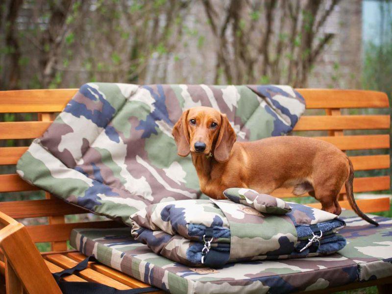 Hundematte, Hundedecke und Picknick-Outdoordecke Adventure Camouflage mit Dackel