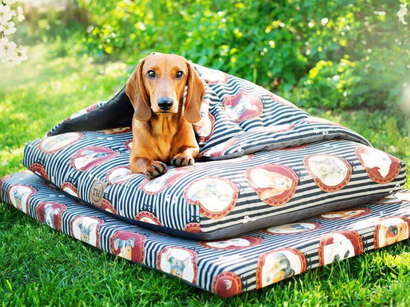 Hundekissen, Hundematte und Hundedecke Lucky Dogs mit Dackel