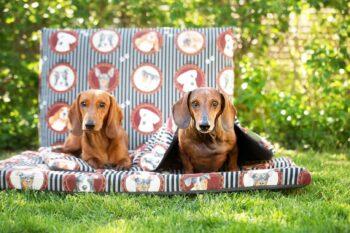 Hundematte und Hundedecke Lucky Dogs mit Dackeln
